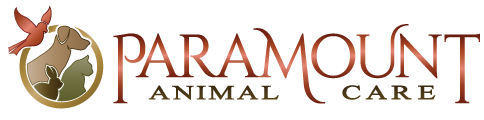 Paramount Animal Care